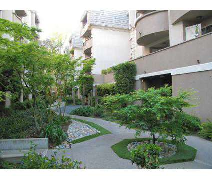1 Bed - Park Regency at 3128 Oak Rd in Walnut Creek CA is a Apartment