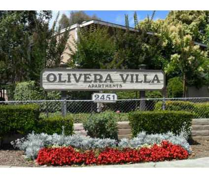 1 Bed - Olivera Villas at 2451 Olivera Road in Concord CA is a Apartment