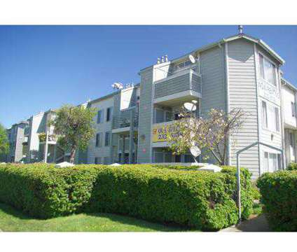 1 Bed - Civic Plaza Apartments at 10944 San Pablo Ave in El Cerrito CA is a Apartment