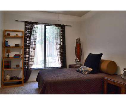 1 Bed - San Palmas at 1111 North Mission Park Blvd in Chandler AZ is a Apartment