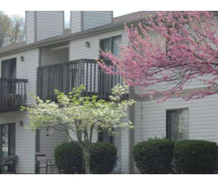 2 Beds - Lantern Ridge Apartments at 401 Fairfax Rd in Blacksburg VA is a Apartment