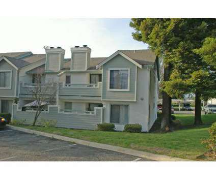 1 Bed - Fountain Plaza Hills at 300 Hilary Way in Vallejo CA is a Apartment