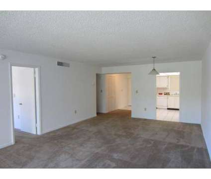 1 Bed - Horizons at 4108 North Pine Island Rd in Fort Lauderdale FL is a Apartment