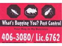 Problem with Roaches, Mice, Ants, Spiders, Bed Bugs, or any other Pests in Your