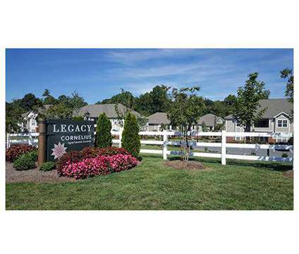 1 Bed - Legacy Cornelius at 8335 Lake Pines Dr in Cornelius NC is a Apartment