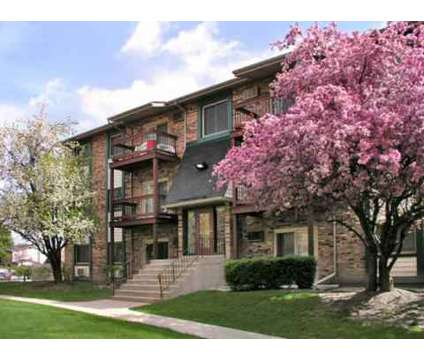 1 Bed - Olympic Village at 31 Olympic Village in Chicago Heights IL is a Apartment