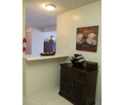 2 Beds - Carriage Hill Apartments at 2130 Wilson Road in Knoxville TN is a Apartment