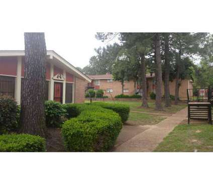 1 Bed - Willow Oaks at 2459 Ketchum Rd in Memphis TN is a Apartment