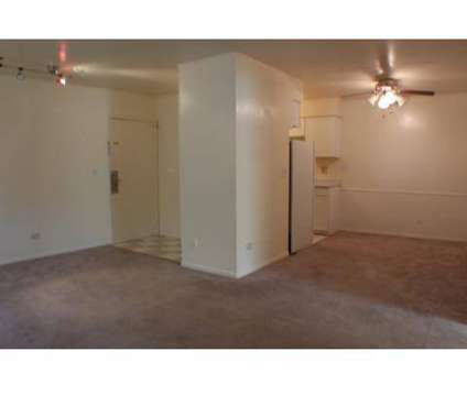 2 Beds - Param Apartments at 1637 S Michigan Ave in Villa Park IL is a Apartment