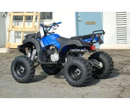 250cc ATV / Quad Utility / Hunter - NEW is a kangdi Rancher ATV in Rancho Cordova CA