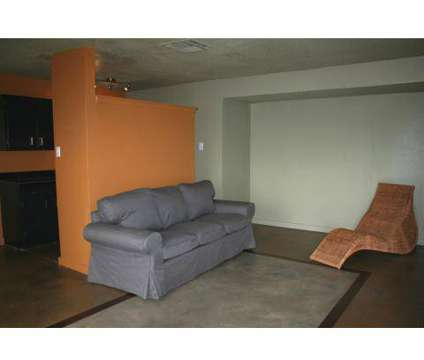 1 Bed - Zen Apartments at 805 S Center St in Arlington TX is a Apartment