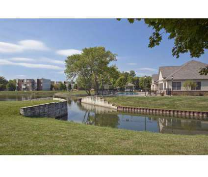 1 Bed - Williams Reserve at 1245 E Prairie Brook Drive in Palatine IL is a Apartment