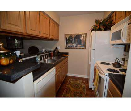 1 Bed - Park at Via Teano at 1400 Hancock Boulevard in Daytona Beach FL is a Apartment