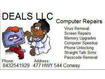 Remove Computer Viruses Same Day Service $39 (USA ) (Conway Horry County )