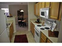 1 Bed - Palmetto Pointe