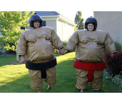 Sumo Wrestling Suit Rental Utah is a Party Rentals service in Lehi UT