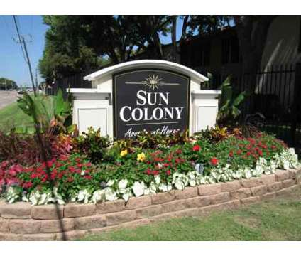 1 Bed - Sun Colony at 10075 Royal Lane in Dallas TX is a Apartment