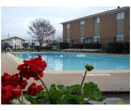 1 Bed - Western Oaks at 1310 Bundrant Dr in Killeen TX is a Apartment