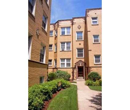 Studio - Ravenswood Neighborhood Apartments at 4435 N Greenview Ave in Chicago IL is a Apartment
