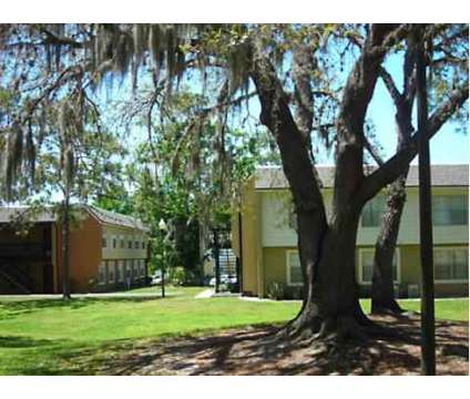 2 Beds - The Place at Alafaya at 11600 Mackay Boulevard in Orlando FL is a Apartment