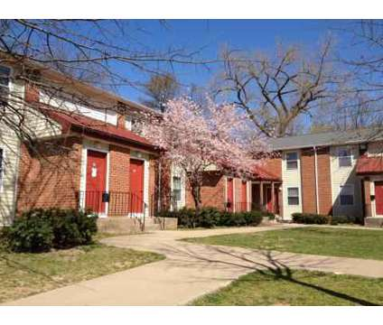 1 Bed - Sheldon Oaks Communities at 54 South Prospect St in Hartford CT is a Apartment