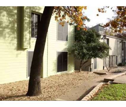 1 Bed - Central Park (Arlington) at 2001 S Cooper St in Arlington TX is a Apartment