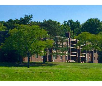 1 Bed - Islander, The at 7711 Normandie Boulevard in Middleburg Heights OH is a Apartment
