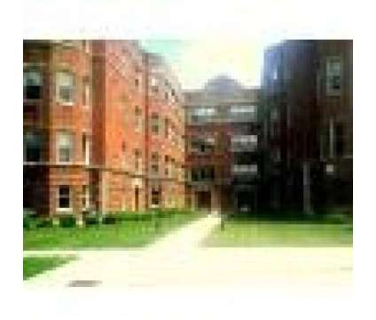 1 Bed - Astoria Properties Constance at 7041-47 Constance in Chicago IL is a Apartment