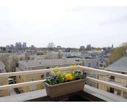 3 Beds - Auburn Court at 1 Brookline Place in Cambridge MA is a Apartment