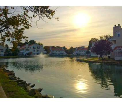 1 Bed - Willow Lake at 713 Willow Lake Cir in Virginia Beach VA is a Apartment