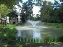 2 Beds - The Grove At Oakbrook
