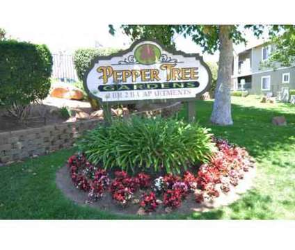 2 Beds - Pepper Tree Gardens Apartments at 8003 Wintergardens Boulevard in El Cajon CA is a Apartment