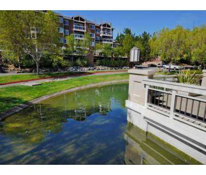 3 Beds - Larkspur Courts at 100 Old Quarry Rd in Larkspur CA is a Apartment