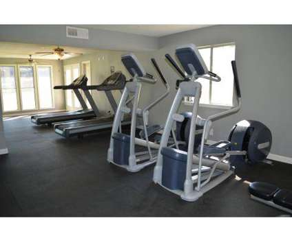1 Bed - Oasis at Oakwell at 1946 Northeast Loop 410 in San Antonio TX is a Apartment