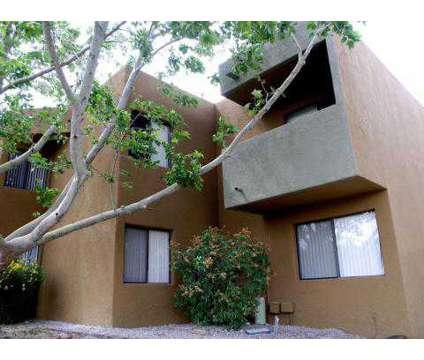 Studio - Citadel Apts at 1520 University Blvd Ne in Albuquerque NM is a Apartment