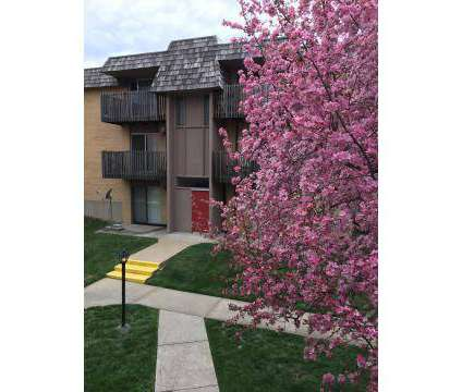 2 Beds - Lexington Square at 13004 E Us Hwy 40 in Independence MO is a Apartment