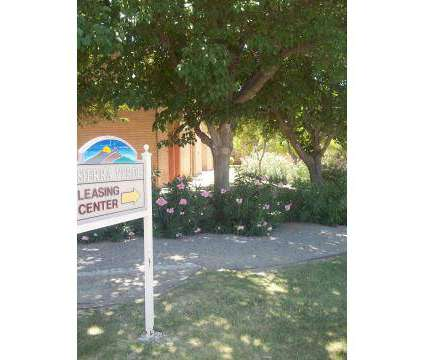 1 Bed - Sierra Verde Apartments Las Cruces at 2600 E Idaho Avenue in Las Cruces NM is a Apartment