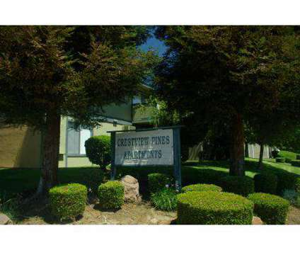 1 Bed - Crestview Pines Apartments at 1600 Aster Drive in Antioch CA is a Apartment