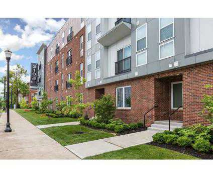 1 Bed - 310 @ NuLu at 310 South Hancock St in Louisville KY is a Apartment