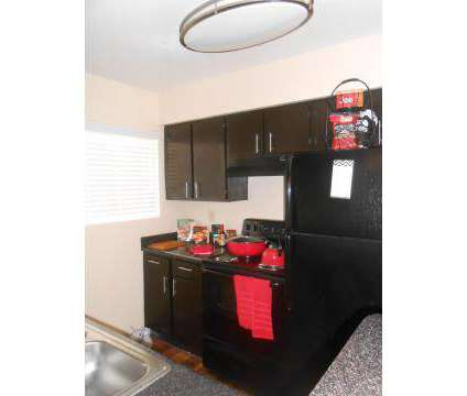 1 Bed - Verano Apartments at 2800 S Dairy Ashford in Houston TX is a Apartment