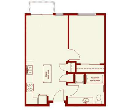 1 Bed - Affinity at Wells Branch - 55+ Community at 14508 Owen-tech Boulevard in Austin TX is a Apartment
