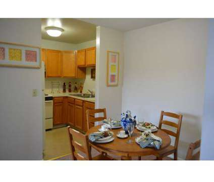 1 Bed - River's Landing at 3 Times Square in Elgin IL is a Apartment