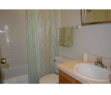 1 Bed - Meadowdale Apartments at 303 Lw Besinger Dr in Carpentersville IL is a Apartment