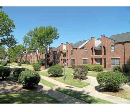 2 Beds - Phoenix Place at 510 South Shelby St Mall in Louisville KY is a Apartment