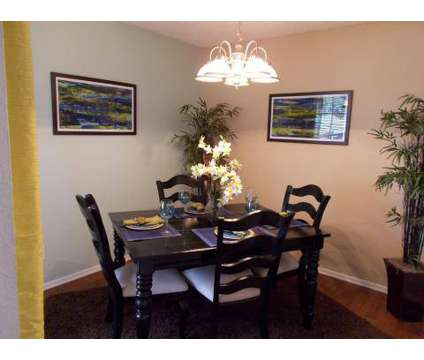 2 Beds - Fox Trails at 6300 Roundrock Trail in Plano TX is a Apartment