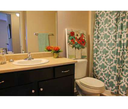 1 Bed - Paso Fino at 10729 Shaenfield Rd in San Antonio TX is a Apartment