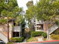 1 Bed - Elan Quail Pointe Encinitas