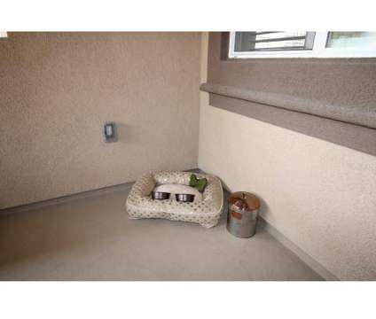 1 Bed - Paloma at 1056 E Philadelphia St in Ontario CA is a Apartment