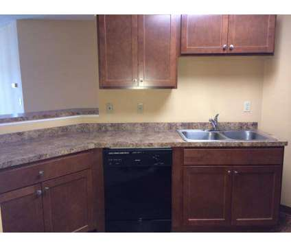 1 Bed - Lake Place at 11445 Anderson Lakes Parkway in Eden Prairie MN is a Apartment