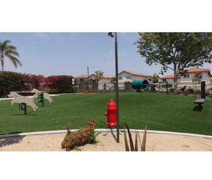 1 Bed - Bella Park Apartments at 210 N Beechwood Avenue in Rialto CA is a Apartment